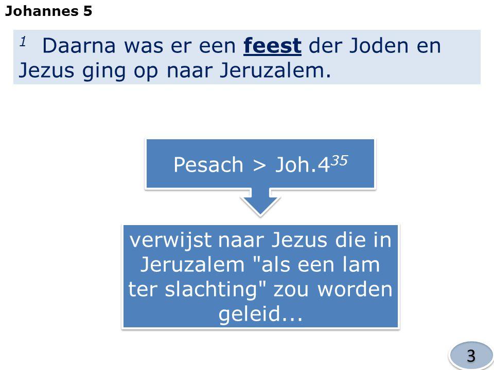 1 Daarna was er een feest der Joden en Jezus ging op naar Jeruzalem.
