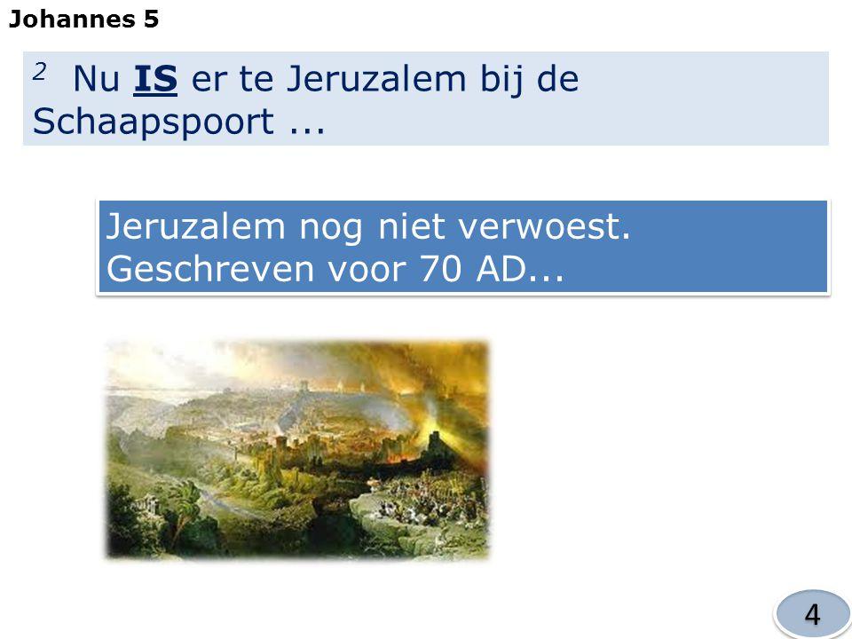 2 Nu IS er te Jeruzalem bij de Schaapspoort ...