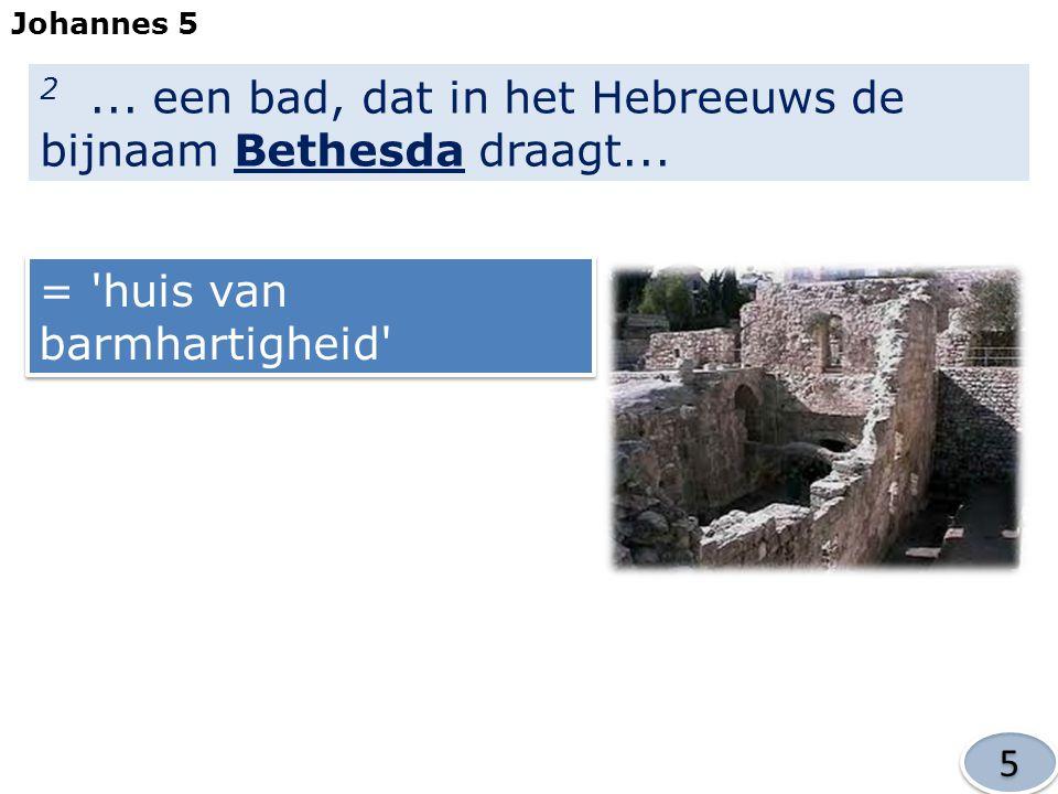 2 ... een bad, dat in het Hebreeuws de bijnaam Bethesda draagt...