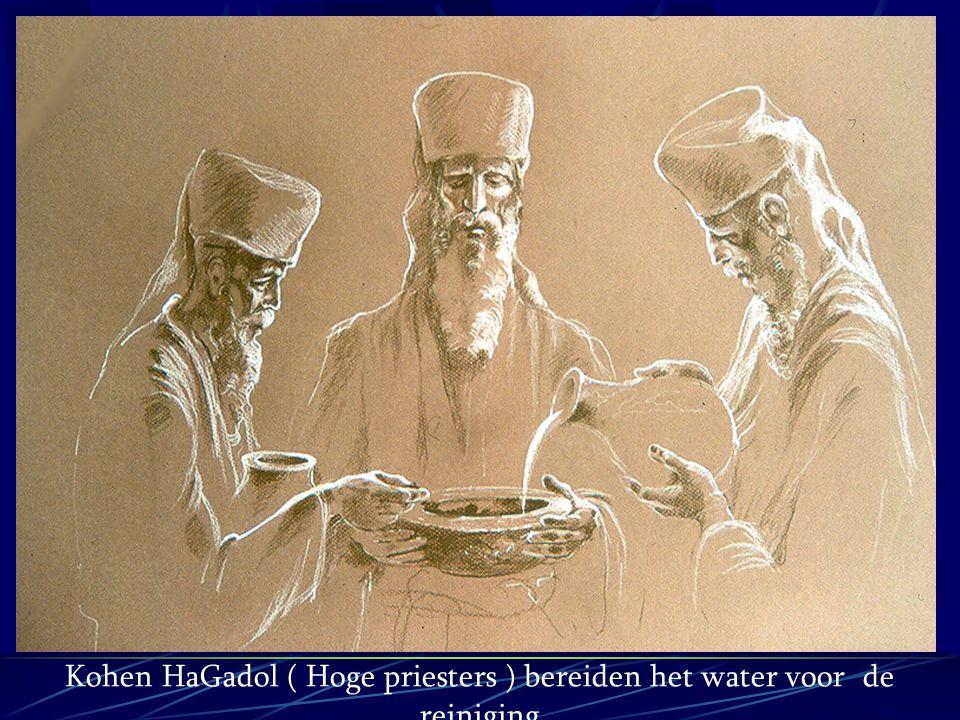 Kohen HaGadol ( Hoge priesters ) bereiden het water voor de reiniging