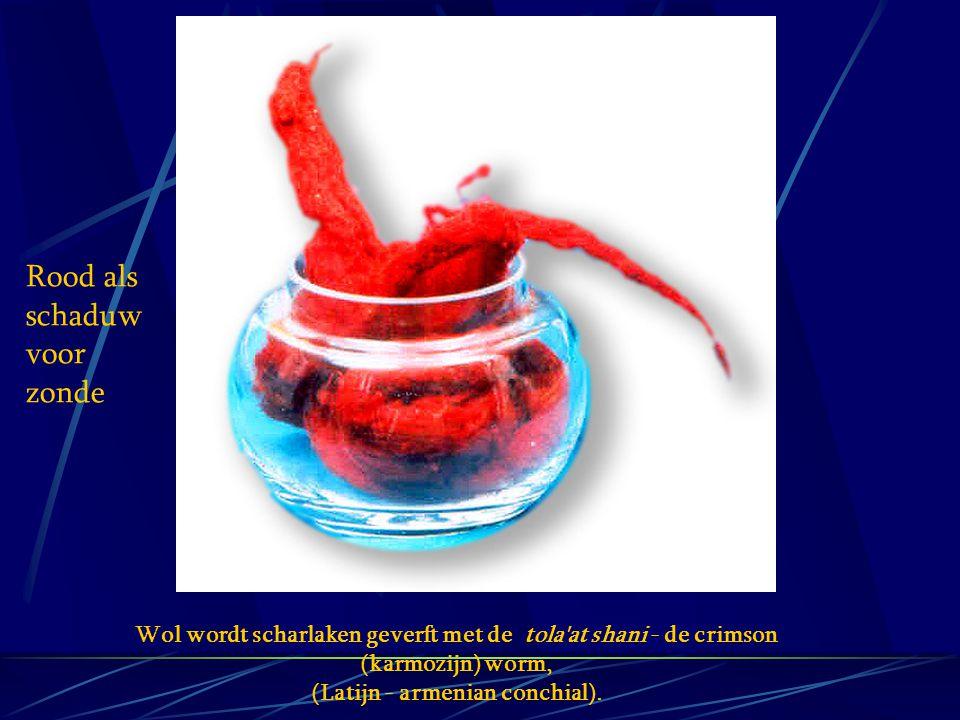 Rood als schaduw voor zonde