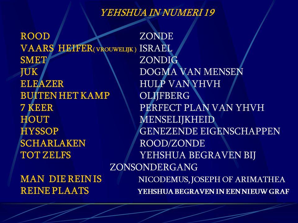 YEHSHUA IN NUMERI 19 ROOD ZONDE. VAARS HEIFER( VROUWELIJK ) ISRAEL. SMET ZONDIG.