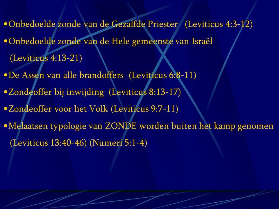 Onbedoelde zonde van de Gezalfde Priester (Leviticus 4:3-12)