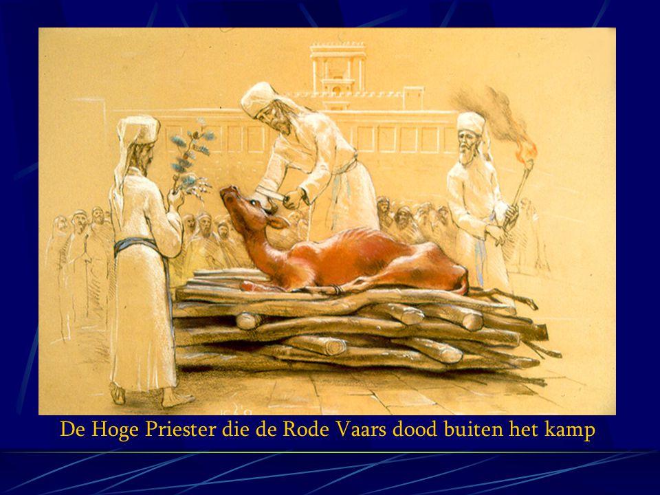 De Hoge Priester die de Rode Vaars dood buiten het kamp
