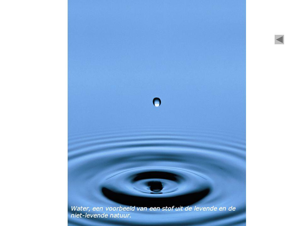 Water, een voorbeeld van een stof uit de levende en de niet-levende natuur.