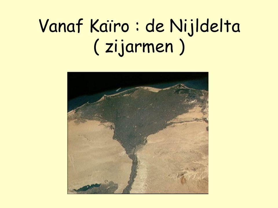 Vanaf Kaïro : de Nijldelta ( zijarmen )