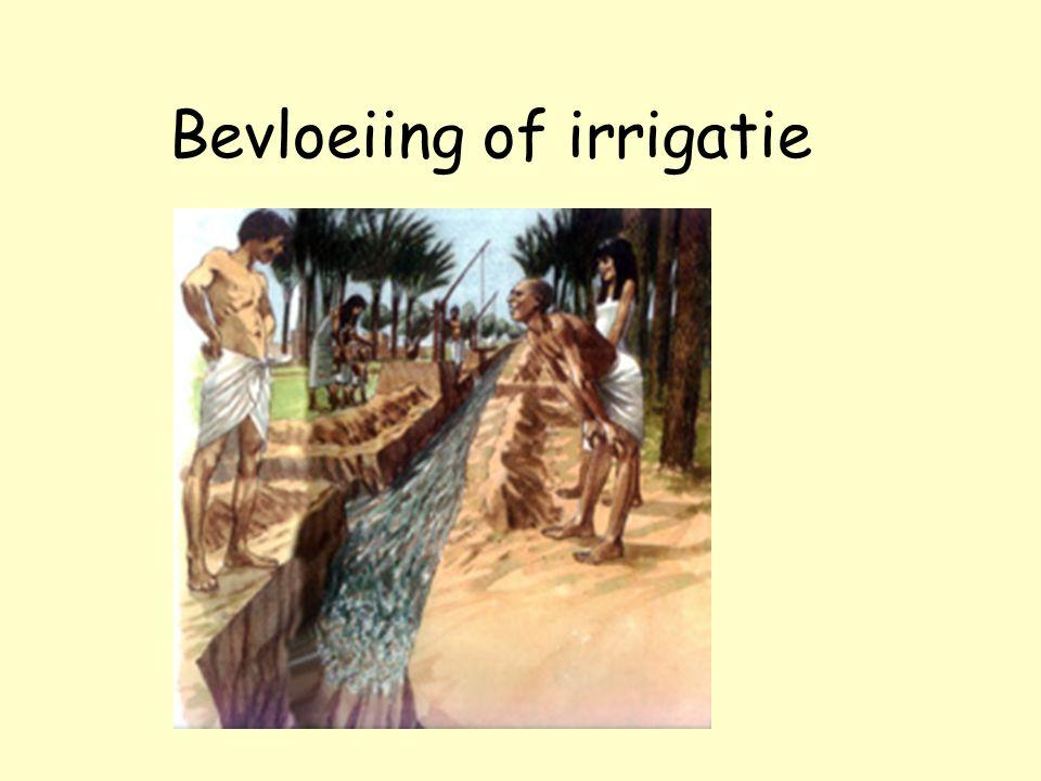 Bevloeiing of irrigatie