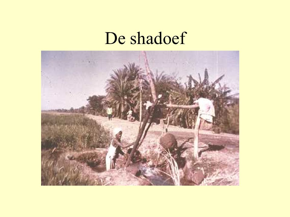 De shadoef