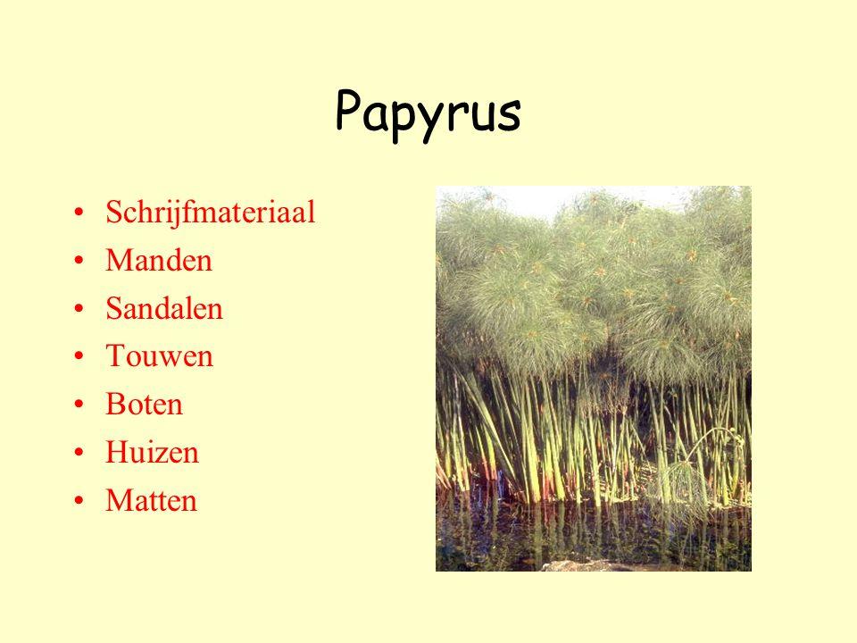 Papyrus Schrijfmateriaal Manden Sandalen Touwen Boten Huizen Matten