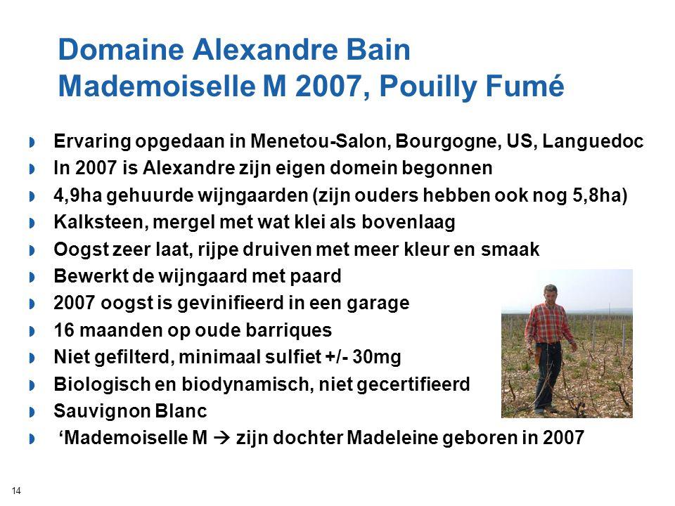 Domaine Alexandre Bain Mademoiselle M 2007, Pouilly Fumé