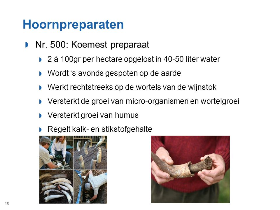 Hoornpreparaten Nr. 500: Koemest preparaat