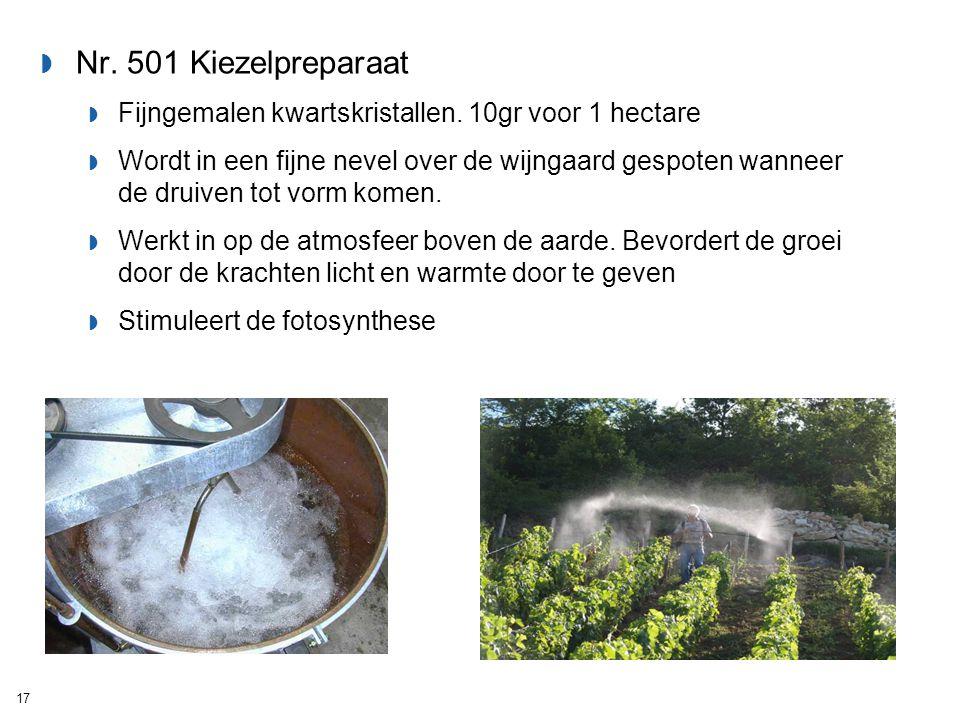 Nr. 501 Kiezelpreparaat Fijngemalen kwartskristallen. 10gr voor 1 hectare.