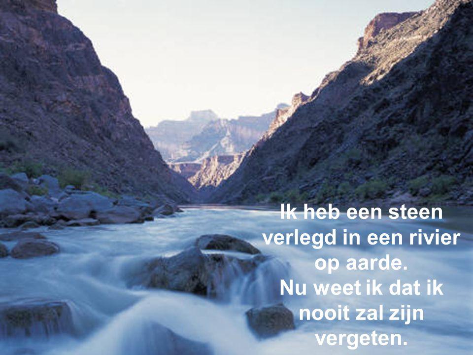 Ik heb een steen verlegd in een rivier op aarde.