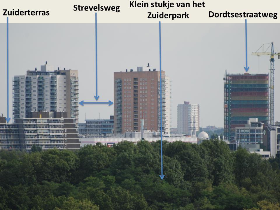 Klein stukje van het Zuiderpark Strevelsweg Zuiderterras Dordtsestraatweg