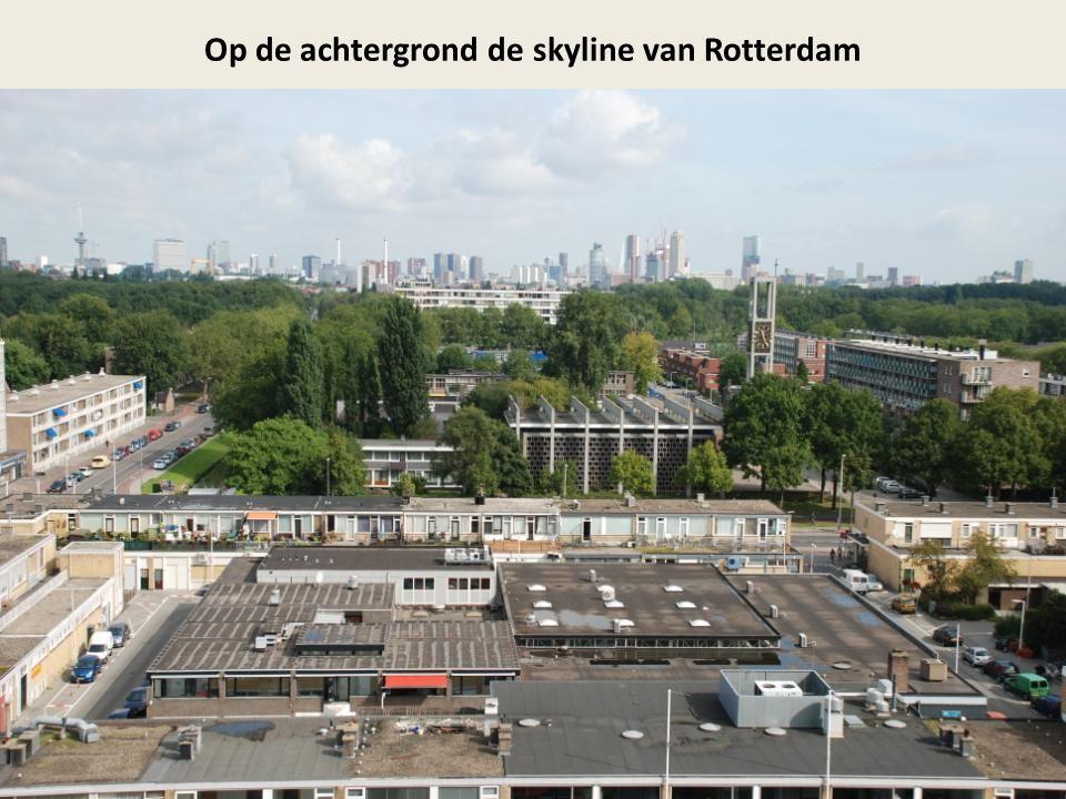 Op de achtergrond de skyline van Rotterdam