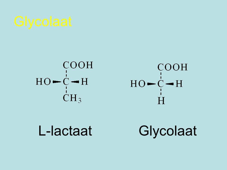 Glycolaat H L-lactaat Glycolaat