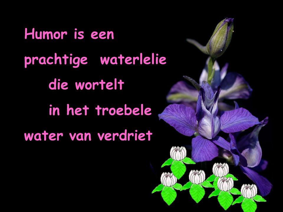 Humor is een prachtige waterlelie die wortelt in het troebele