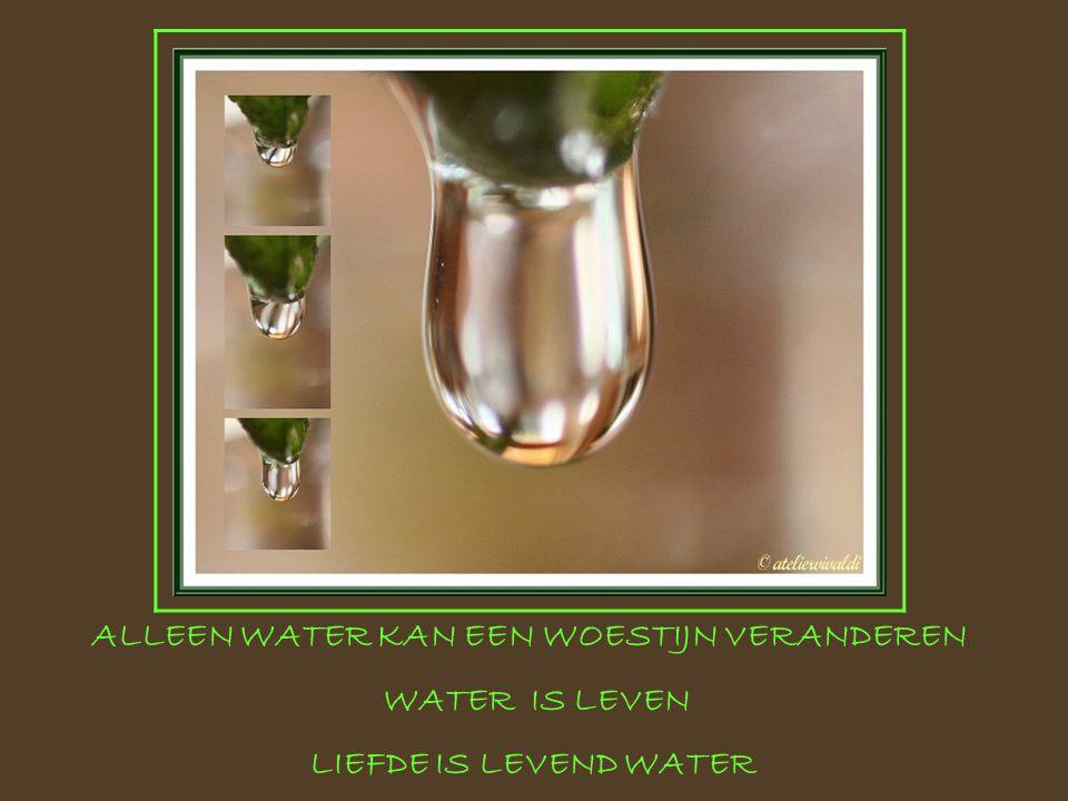 ALLEEN WATER KAN EEN WOESTIJN VERANDEREN