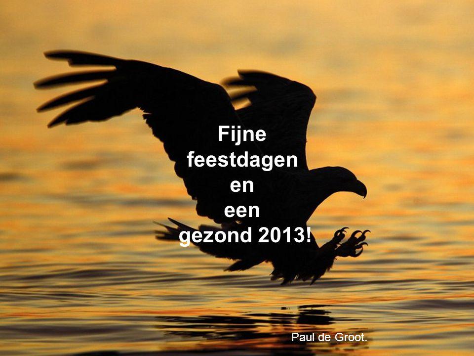 Fijne feestdagen en een gezond 2013!