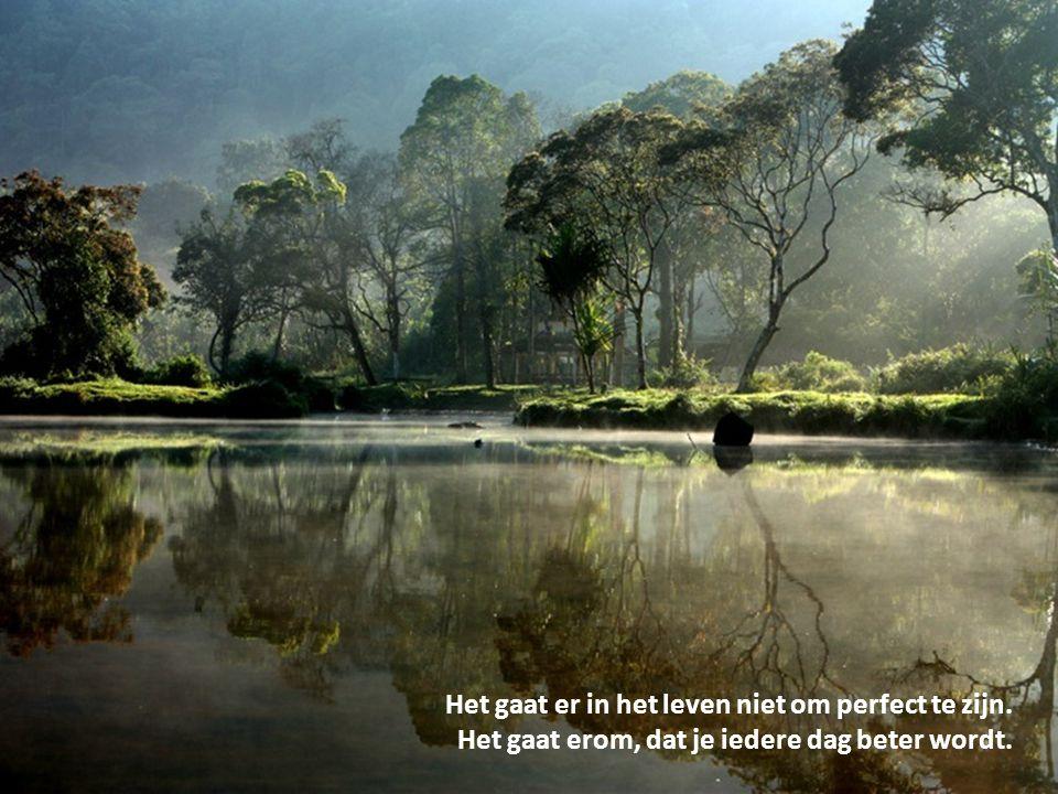 Het gaat er in het leven niet om perfect te zijn.