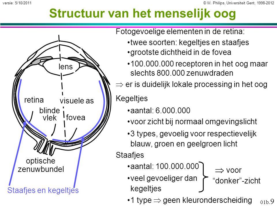 Structuur van het menselijk oog