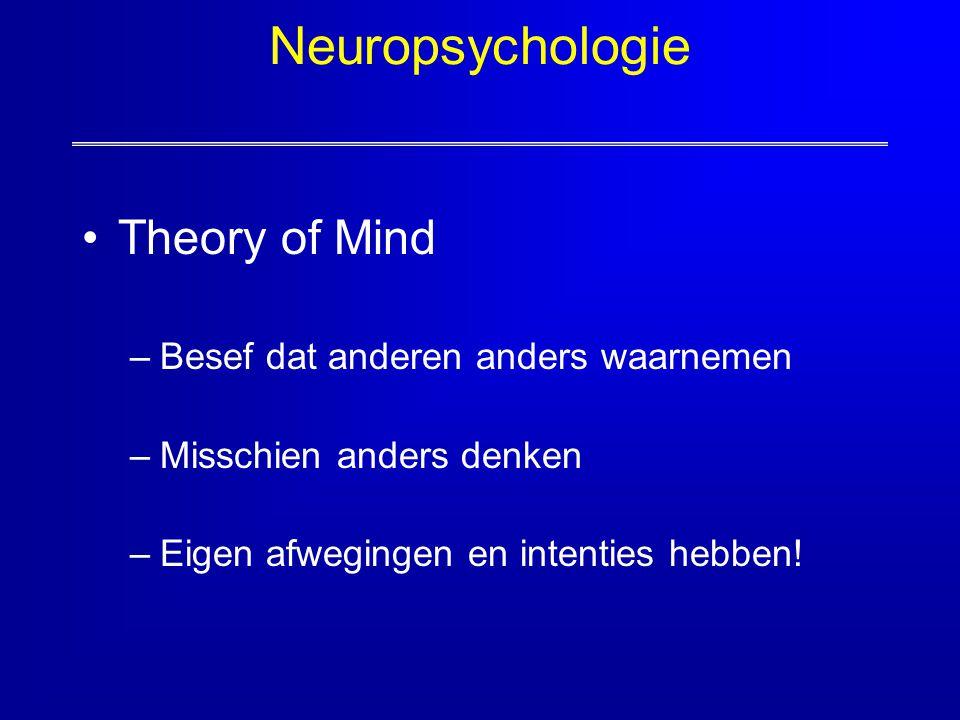 Neuropsychologie Theory of Mind Besef dat anderen anders waarnemen