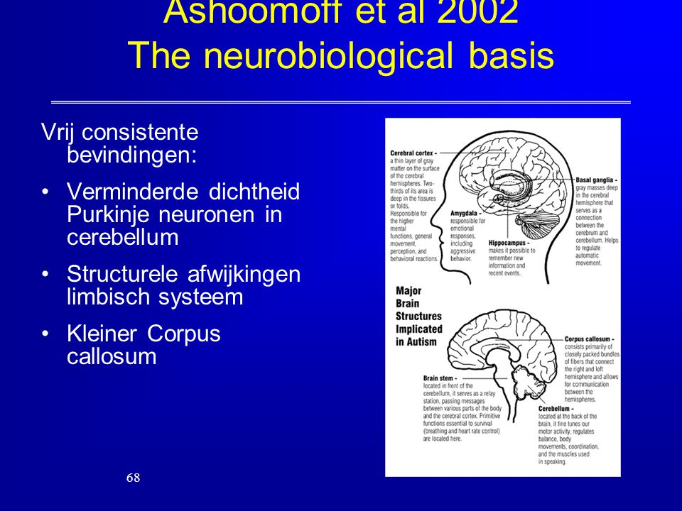 Ashoomoff et al 2002 The neurobiological basis