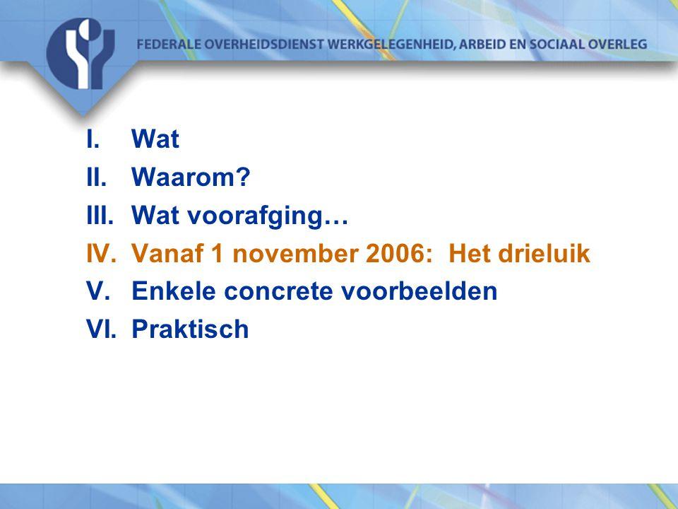 Wat Waarom. Wat voorafging… Vanaf 1 november 2006: Het drieluik.