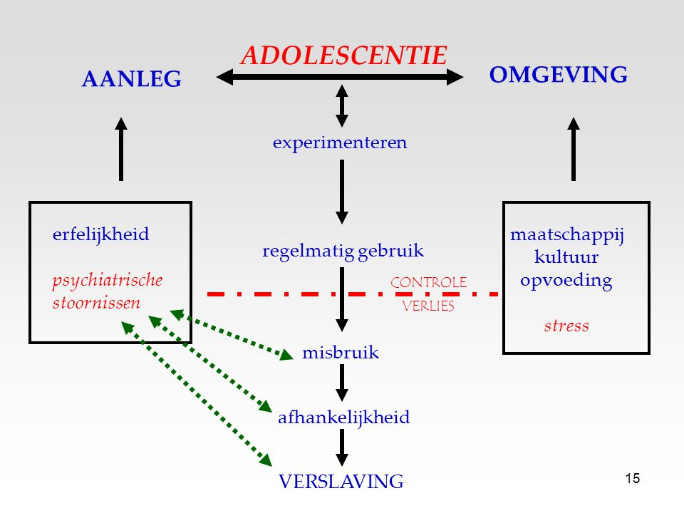 ADOLESCENTIE OMGEVING AANLEG experimenteren erfelijkheid