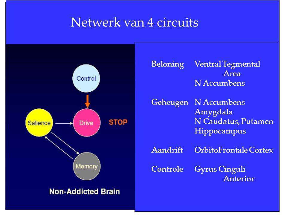 Netwerk van 4 circuits Beloning Ventral Tegmental Area N Accumbens