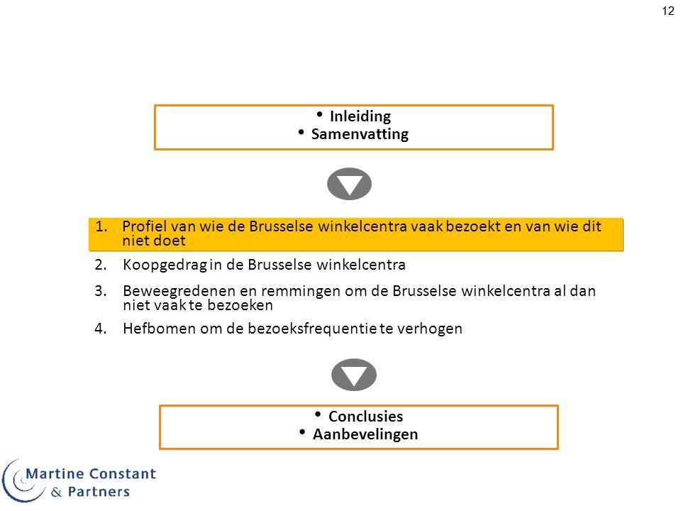 Inleiding Samenvatting. Profiel van wie de Brusselse winkelcentra vaak bezoekt en van wie dit niet doet.