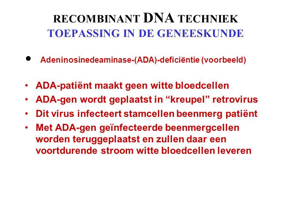 RECOMBINANT DNA TECHNIEK TOEPASSING IN DE GENEESKUNDE