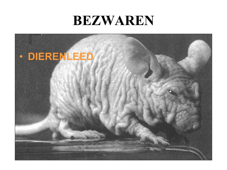 BEZWAREN DIERENLEED
