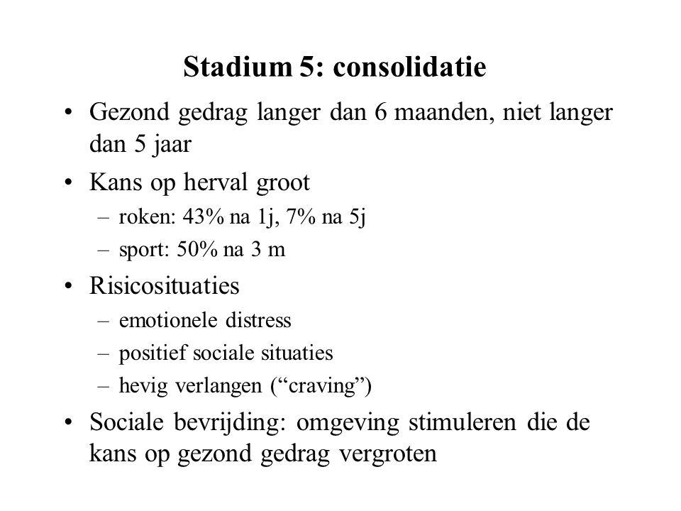 Stadium 5: consolidatie