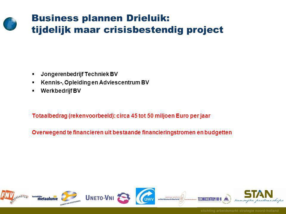 Business plannen Drieluik: tijdelijk maar crisisbestendig project