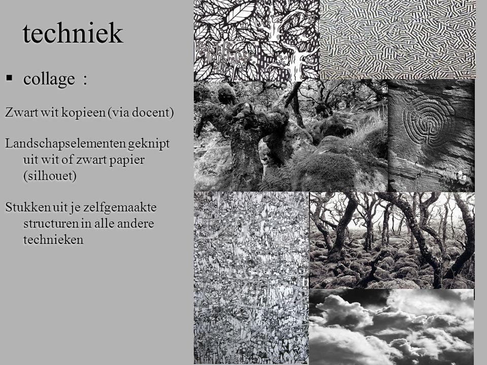 techniek collage : Zwart wit kopieen (via docent)