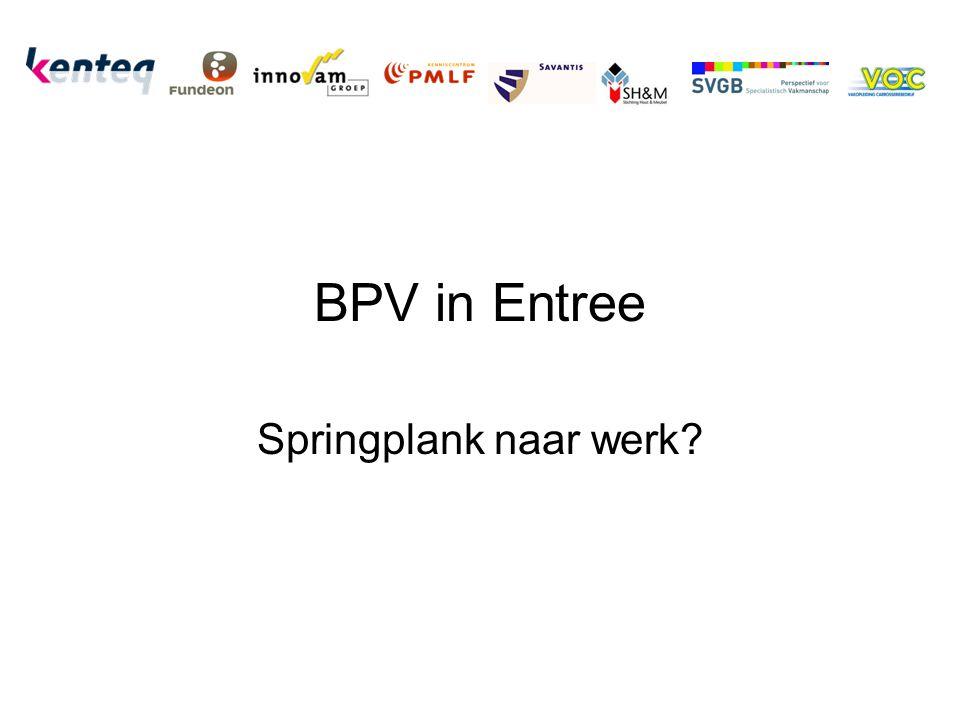 BPV in Entree Springplank naar werk