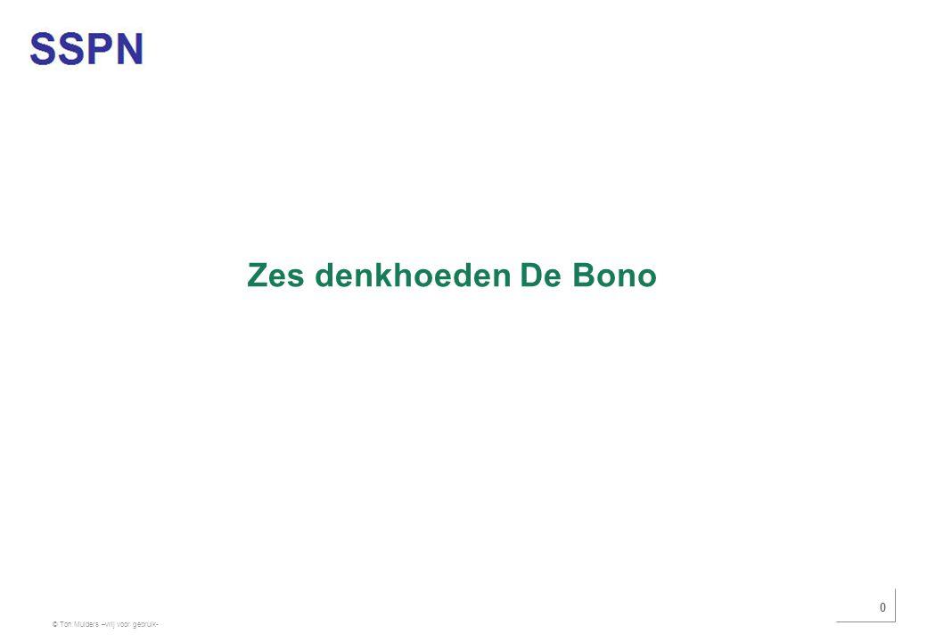 Zes denkhoeden De Bono Gebruik