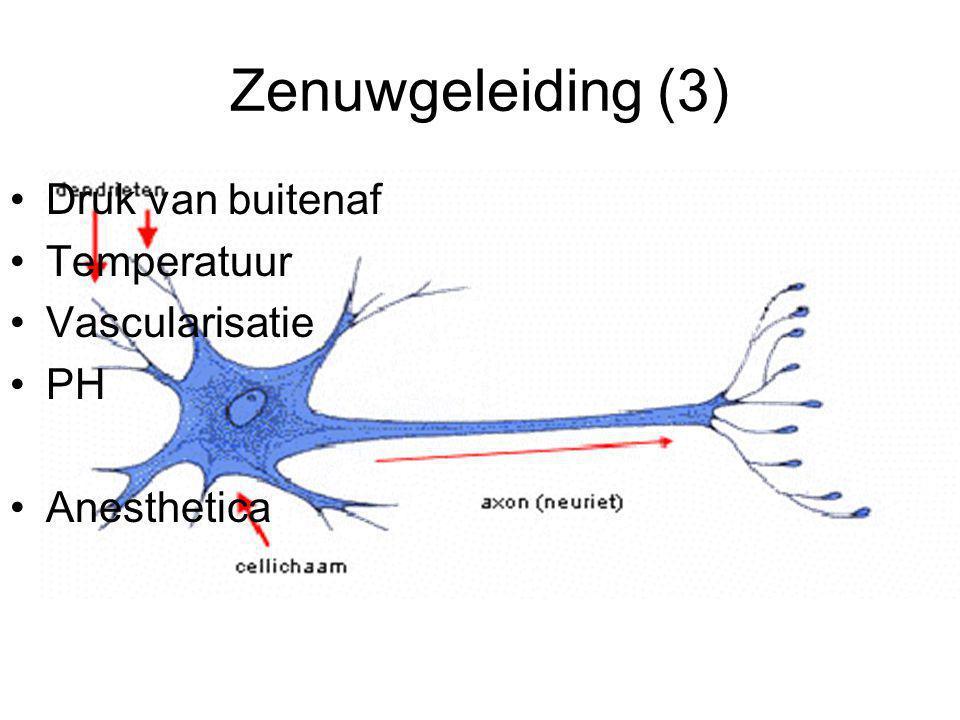 Zenuwgeleiding (3) Druk van buitenaf Temperatuur Vascularisatie PH