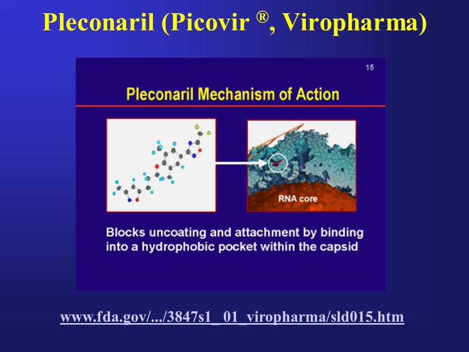 Pleconaril (Picovir ®, Viropharma)