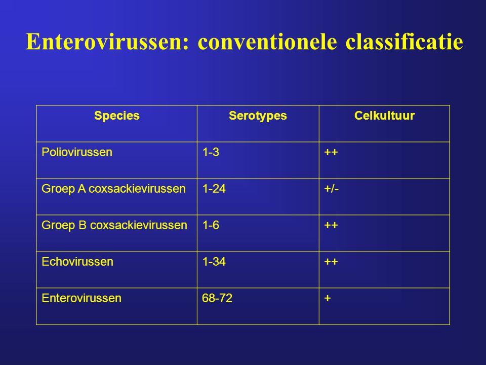 Enterovirussen: conventionele classificatie