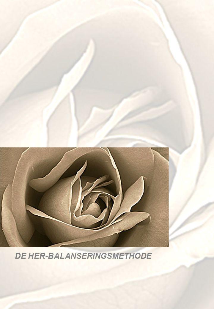 DE HER-BALANSERINGSMETHODE