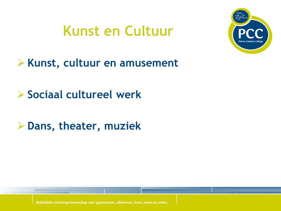 Kunst en Cultuur Kunst, cultuur en amusement Sociaal cultureel werk