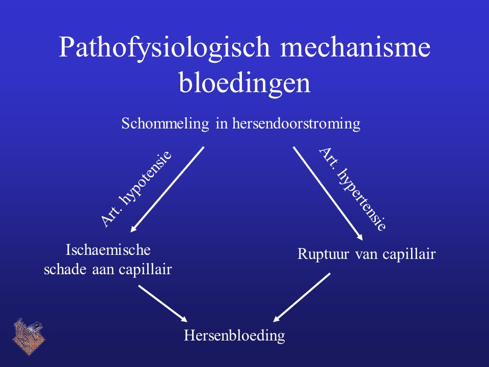 Pathofysiologisch mechanisme bloedingen