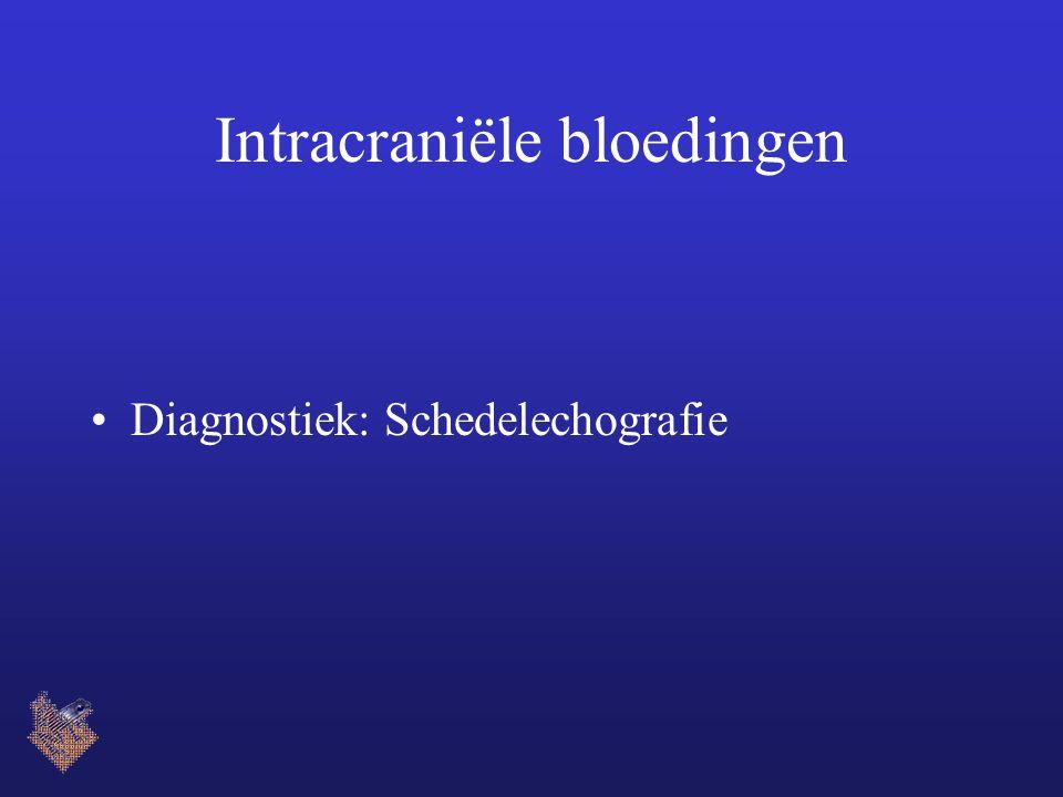 Intracraniële bloedingen