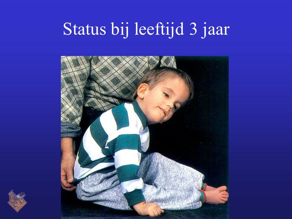 Status bij leeftijd 3 jaar