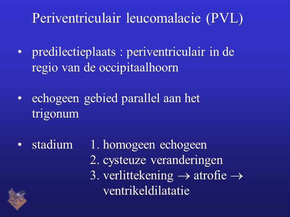 Periventriculair leucomalacie (PVL)