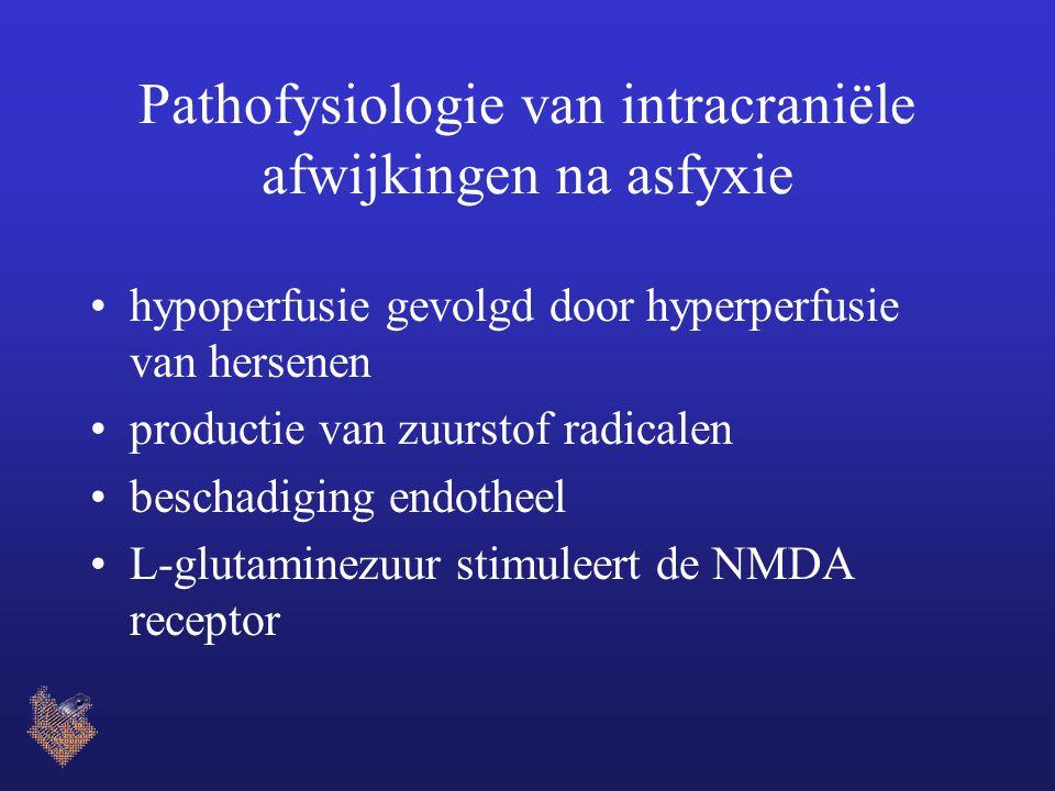 Pathofysiologie van intracraniële afwijkingen na asfyxie