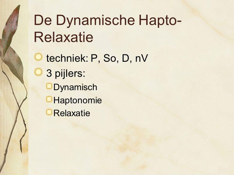 De Dynamische Hapto-Relaxatie
