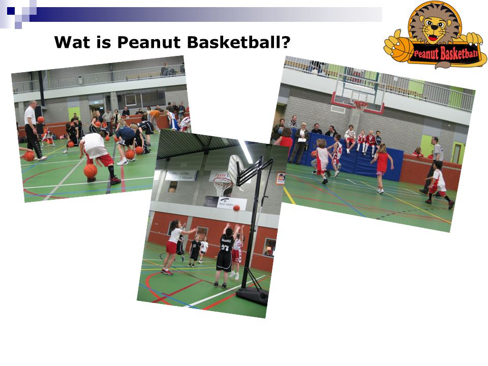 Wat is Peanut Basketball